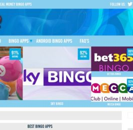 New bingo app review site